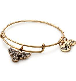 Alex and Ani Charity By Design, Spirit of the Eagle EWB, RG