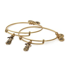 Alex and Ani Charity By Design, Side by Side Set of 2 EWB, RG