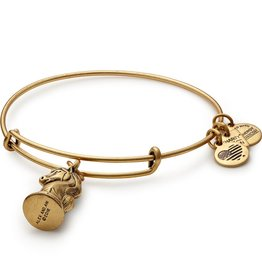 Alex and Ani Charity By Design, The Knight EWB, RG