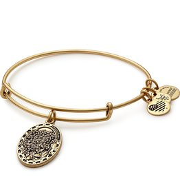 Alex and Ani Because I Love You, Daughter II, EWB, RG