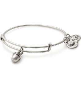 Alex and Ani Unexpected Blessings II EWB, RS