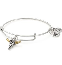 Alex and Ani Spirited Skull EWB, RG