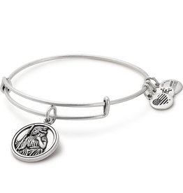 Alex and Ani Saint Christopher III EWB, RS