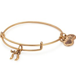 Alex and Ani **Chai EWB, RG