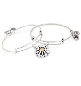 Alex and Ani You Are My Heart, Two Tone Set of 2 RS