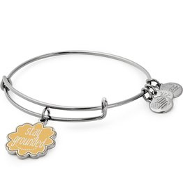 Alex and Ani Words are Powerful, Stay Grounded EWB, Midnight Silver
