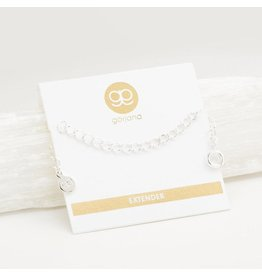 Gorjana Silver Necklace Extender