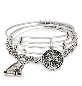 Alex and Ani Pawsitive Vibes Set of 3, RS