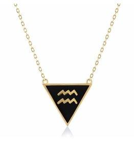 Shop Zodiacs Zodiac Necklace - Aquarius