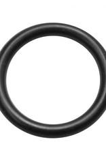O-Ring (Bronco Pump)