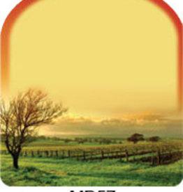 MacDay Label MacDay (Fall Vineyard) 30pk Labels
