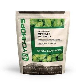 CITRA- WHOLE CONE HOPS- 1lb.