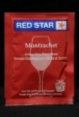 PREMIER CLASSIQUE/ MONTRACHET WINE YEAST