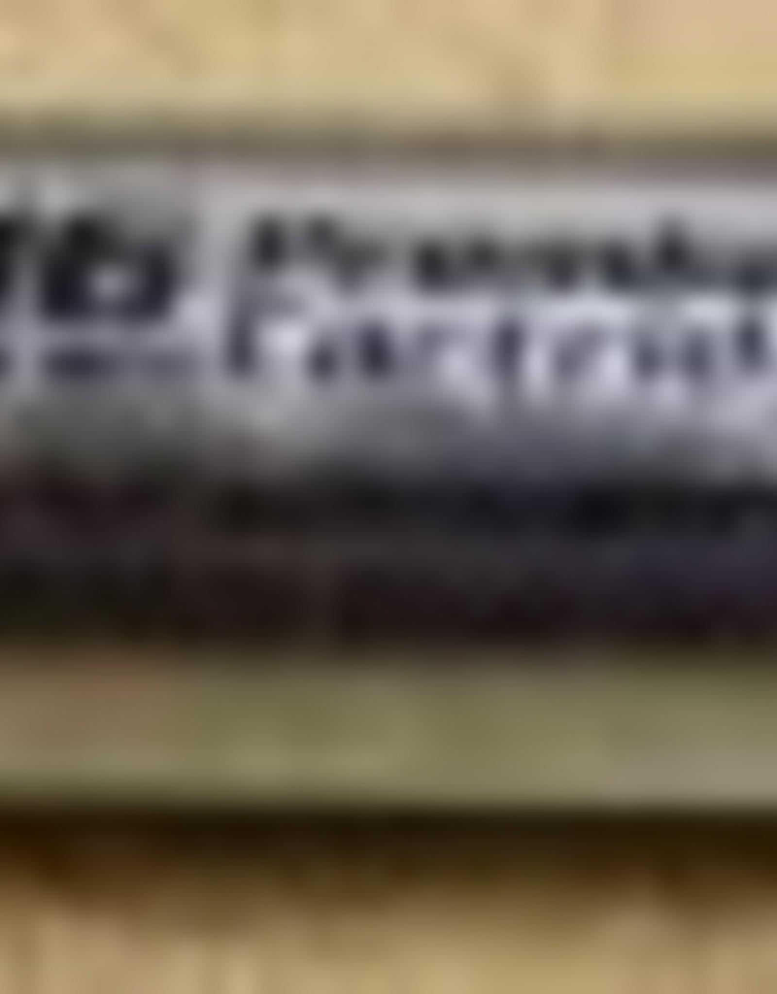 16g Unthreaded CO2 Cartridge (6)