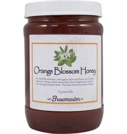 ORANGE BLOSSOM HONEY 3 lb JAR