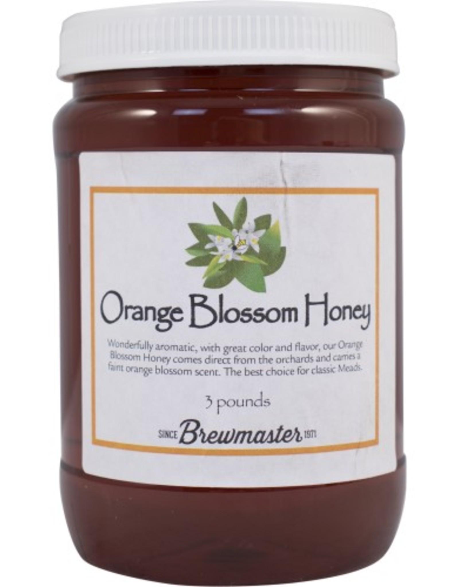 ORANGE BLOSSOM HONEY 6 lb