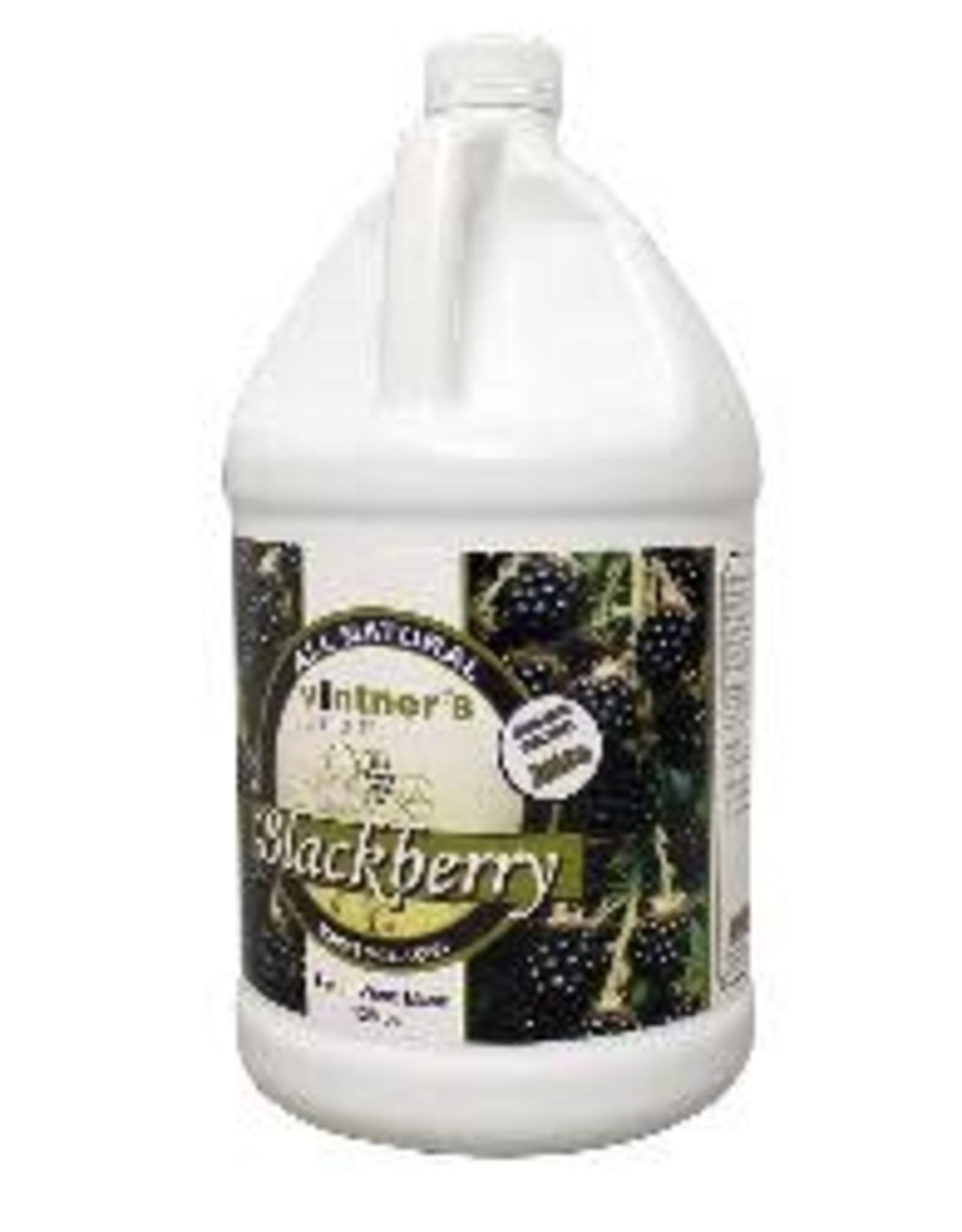 BLACKBERRY FRUIT WINE BASE 1G