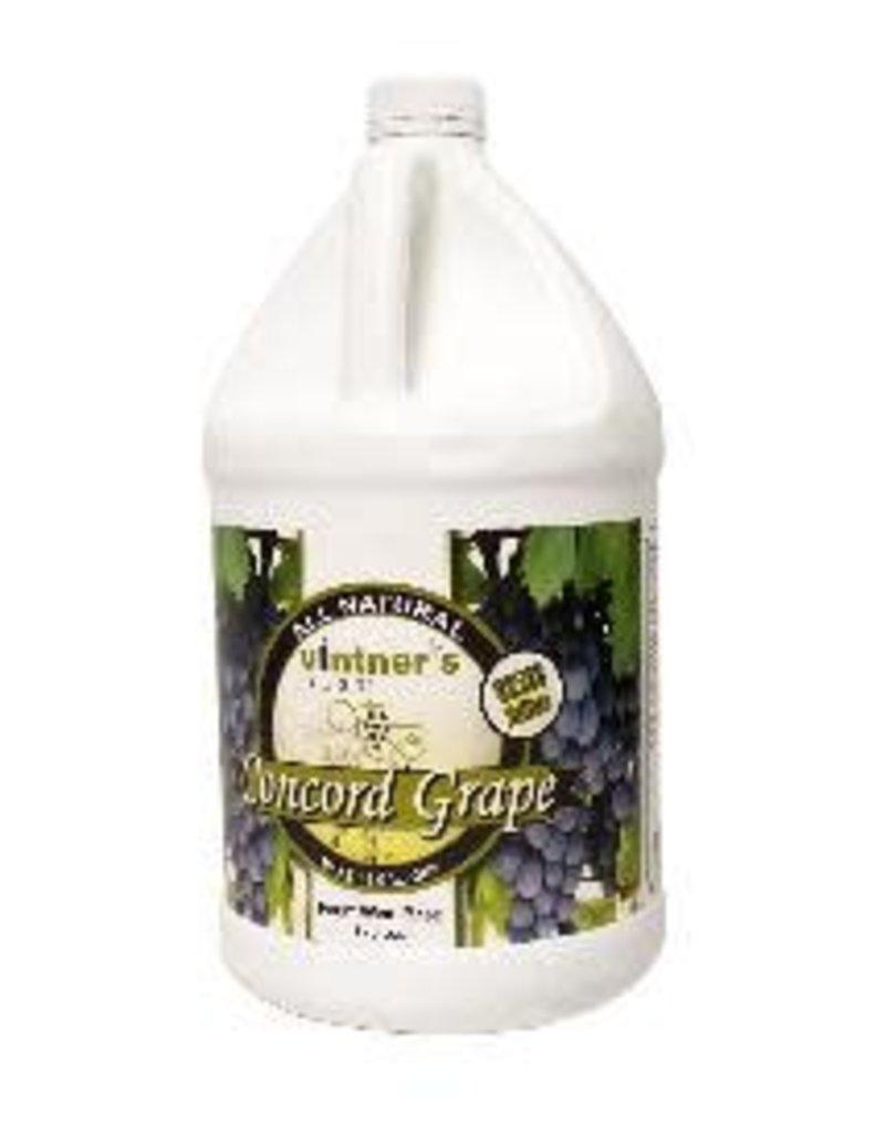 CONCORD GRAPE FRUIT WINE BASE 1G