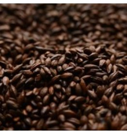 ROASTED BARLEY(BRIESS)-1oz.