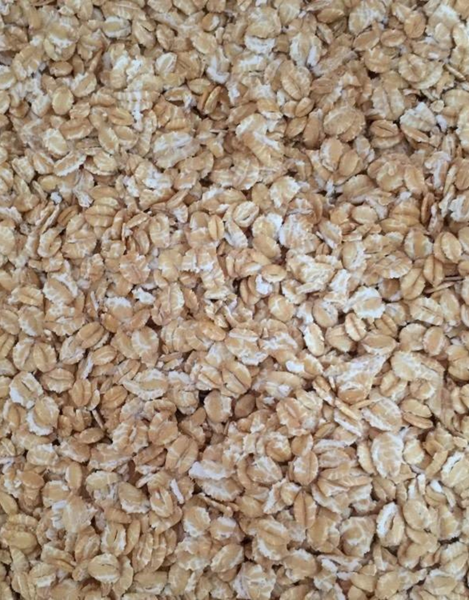 FLAKED WHEAT-1lb.