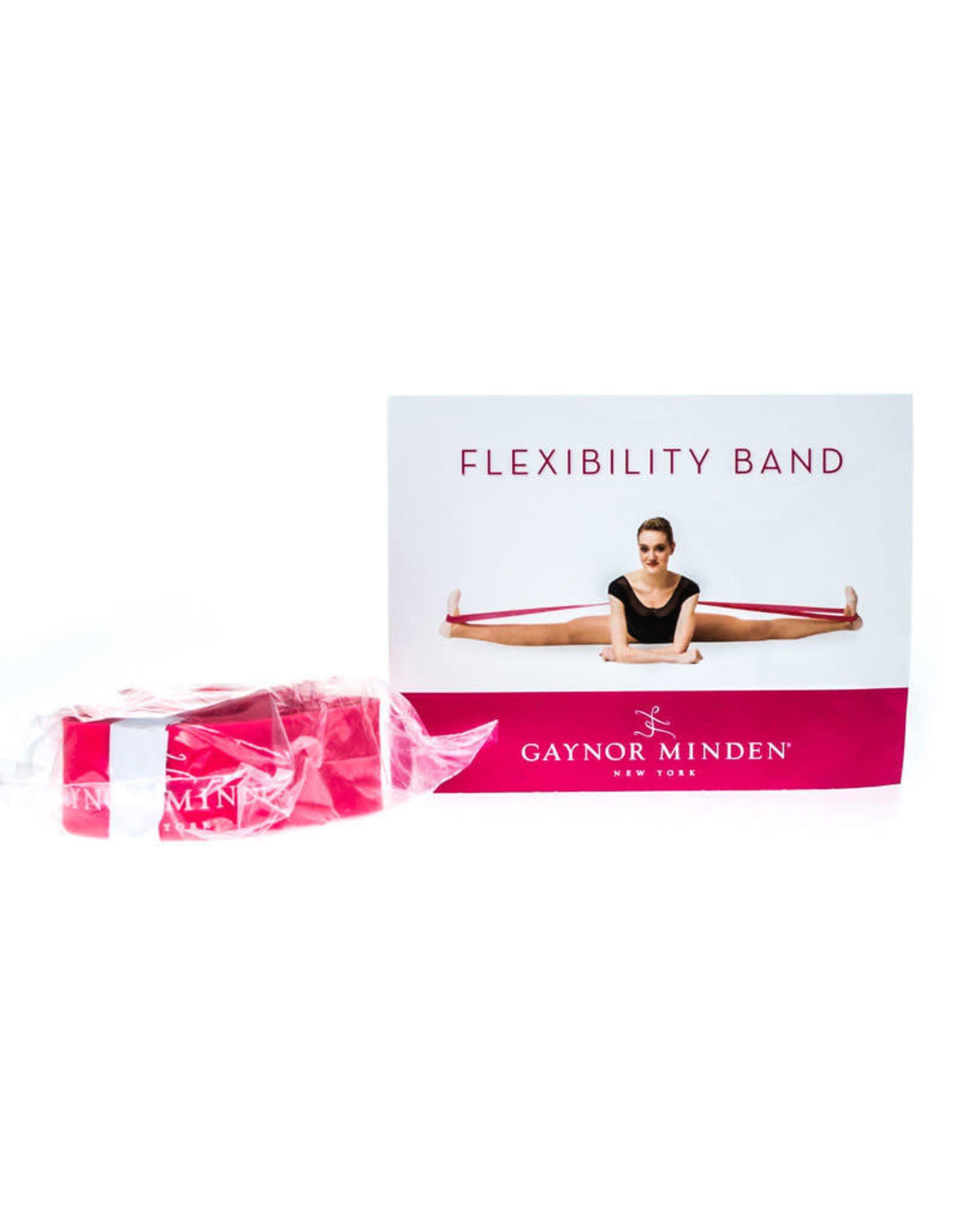 Gaynor flexibility band TA-F-110