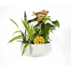 Boule d'orchidées PJ-03