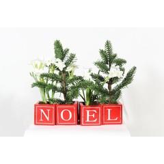 Ens. 4 Blocs de bois rouge & plantes