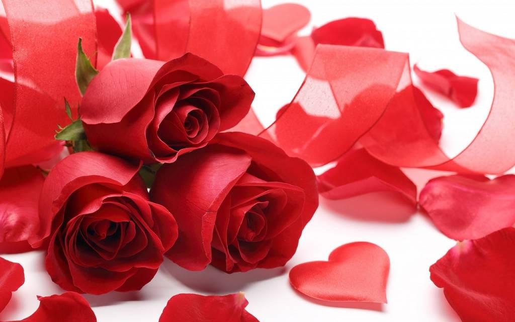 Le nombre de roses pour la Saint-Valentin : un message important