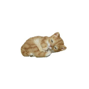 Chat roux couché 4''