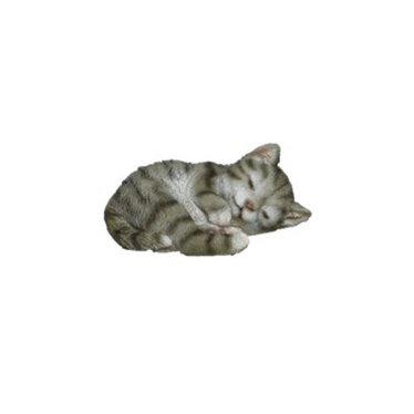 """Chat gris couché 4"""""""
