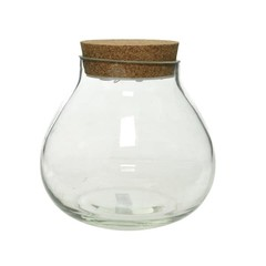 """Terrarium vase bouchon liège lumineux LED 8"""""""