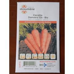 Semences bio carotte danvers 126 bio