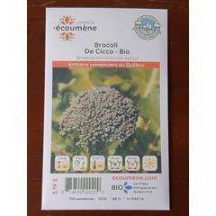 Semences brocoli de cicco bio