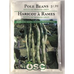 Graines d'Haricot à Rames (Kentucky Wonder Green)