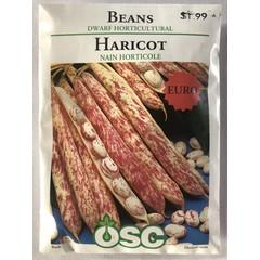Graines d'Haricot (Nain Horticole)