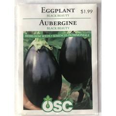 Graines d'Aubergine (Black Beauty)
