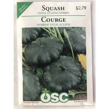 Graines de Courge (Hybride Total Eclipse)