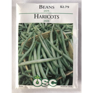 Graines d'Haricot (Jade)
