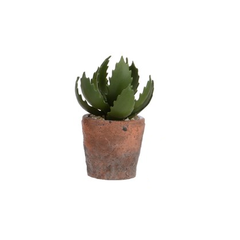 Kalanchoe artificiel en pot terracotta 3x8''