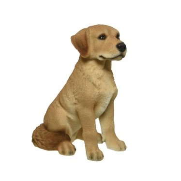 Chien blond assis 18""