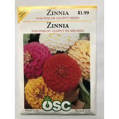 Graines de Zinnia (Pom Pom ou Lilliput en mélange)