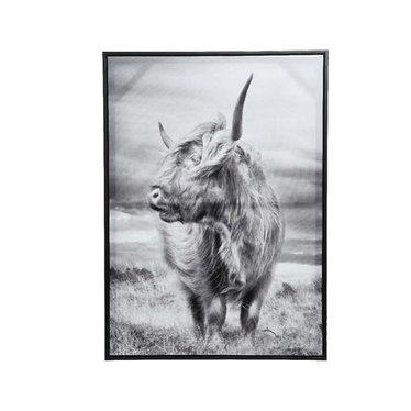 Cadre taureau noir et blanc 20x28''