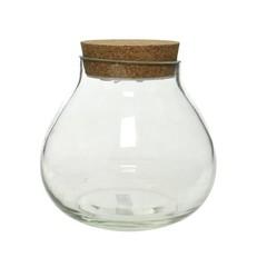 Terrarium vase bouchon liège avec lumière 6''
