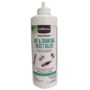 Chemfree Insectigone fourmi insecte rampant 200g