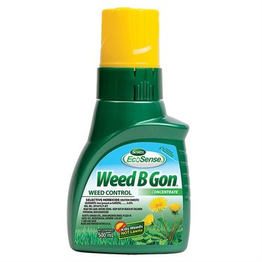 Weed B Gon concentre 500ml