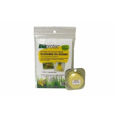 Bioprotec Pheromones scarabee du rosier