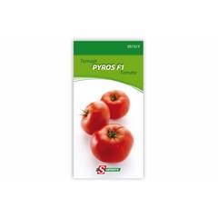 Tomate Pyros I