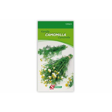 Camomille I