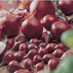 Oignons Rouges pqt 80