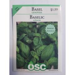 Graines Basilic Génois